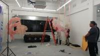 103_gallery-set-up-intestine.jpg